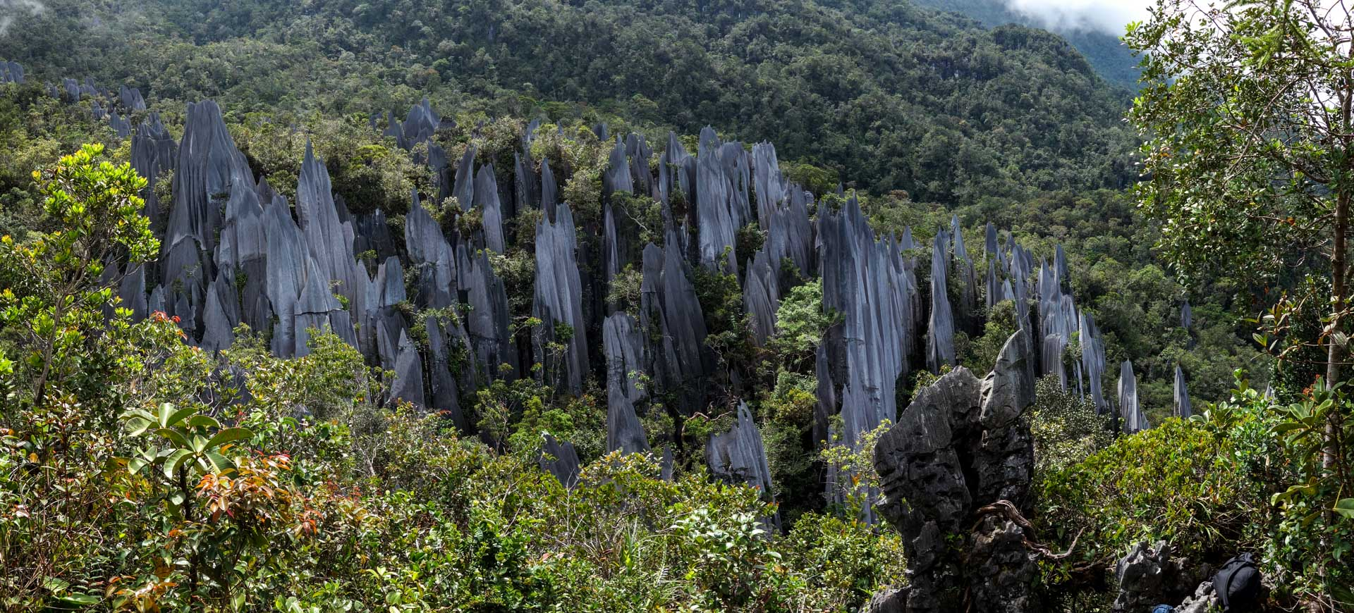 how to go to mulu national park